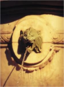 Médaillon tête de lion de la Fontaine du Bareuzey à Dijon