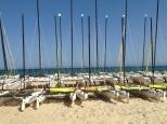 une partie de la flotte de catamaran sur la plage de Hammamet