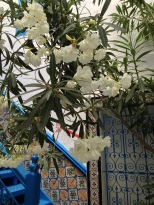 Toutes les cours intérieures sont largement fleuries pour offrir la fraîcheur nécessaire à une pause réconfortante et si confortable